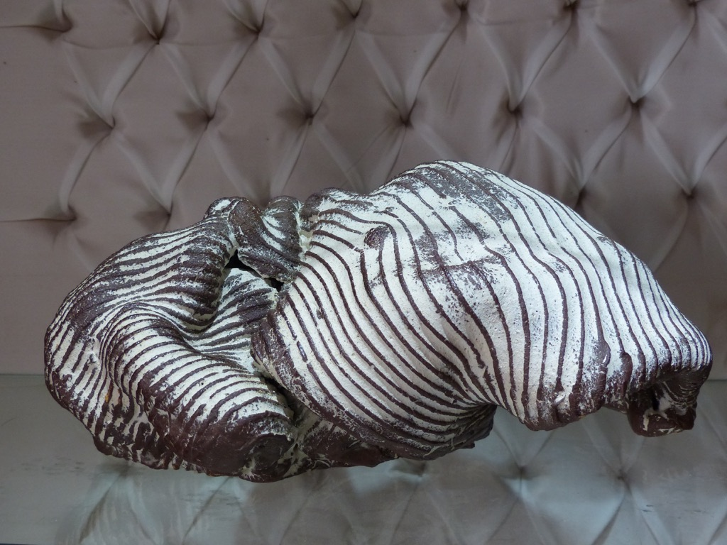 Nouvelle collection d'objets céramiques par Jane Norbury